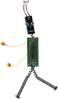 BitBot Rejoices for his BitScope